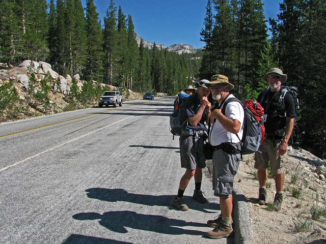 Waiting For The Bus On Tioga Road (0826)