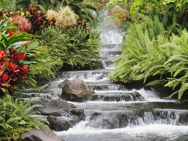 Et brusende vandfald omgivet af blomster. - Frans Lemmens