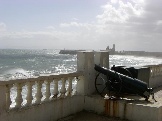 Canon d'Alger