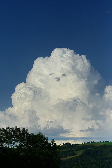 nuage Nounours