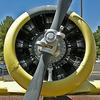 North American AT-6 Texan (8532A)
