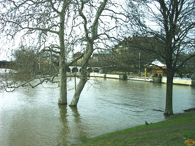 2006-04-05 029 Hochwasser