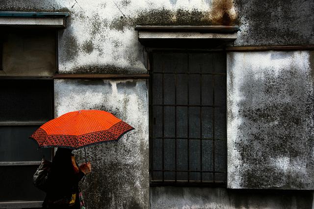 Tsuyu (梅雨) Rainy Season #2