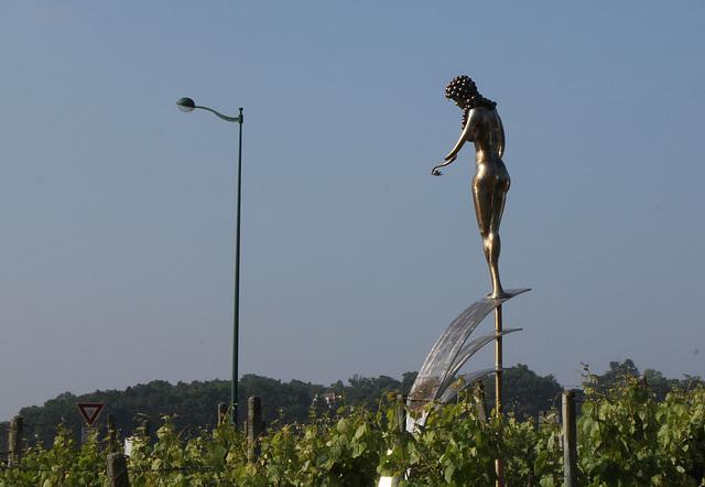 La vigne- Allégorie de la légende