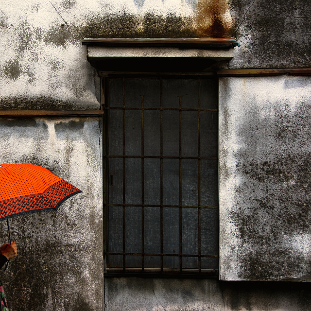 Tsuyu (梅雨) Rainy Season #3