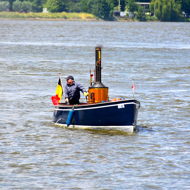 Dordt in Stoom 2014 – SS Gusta