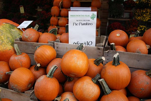 07.WholeFoodsMarket.1440P.NW.WDC.8October2009