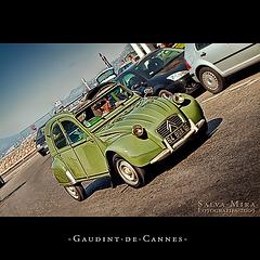 Gaudint de Cannes [ #2 ]