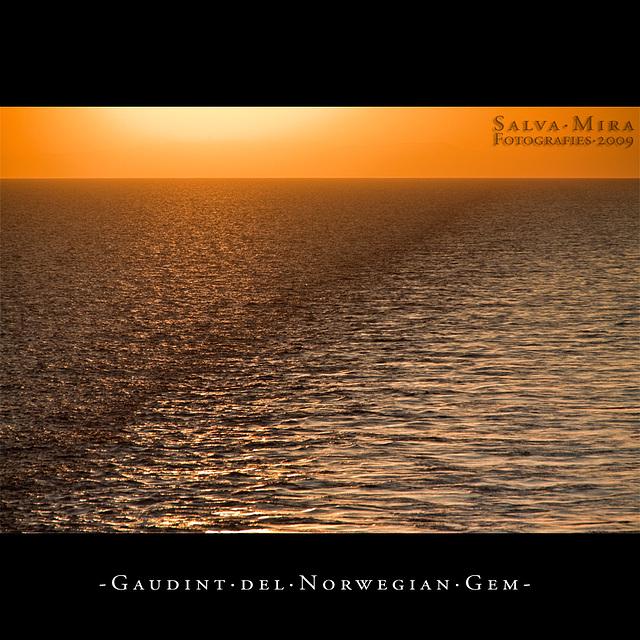 Gaudint del Norwegian Gem [ #5 ]