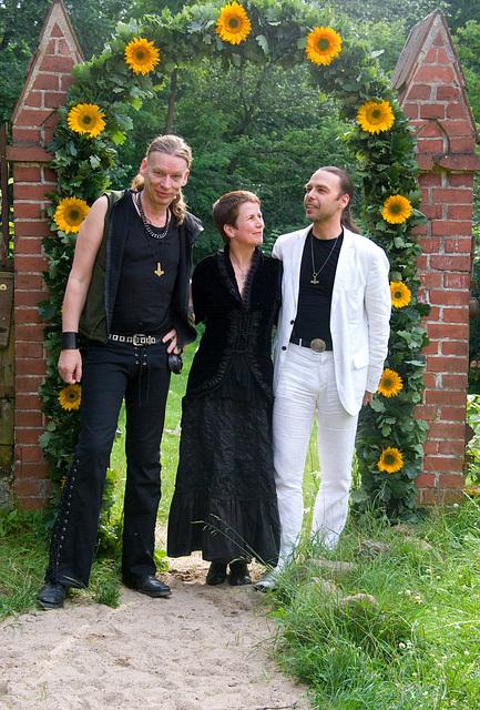 Singvøgel & Sonnenblumen