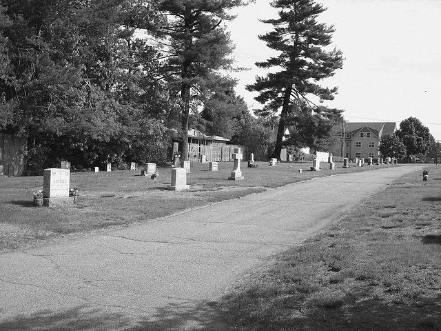 Cimetière St-Charles / St-Charles cemetery -  Dover , New Hampshire ( NH) . USA.   24 mai 2009   -  Janelle & friends.. N & B