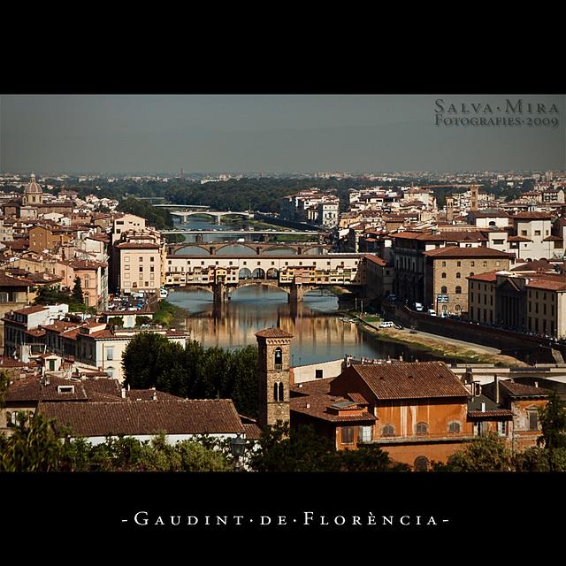 Gaudint de Florència [ #2 ]