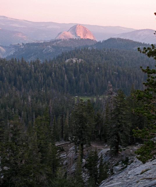 Half Dome From May Lake (0787)