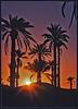 coucher de soleil sur EL GOLEA