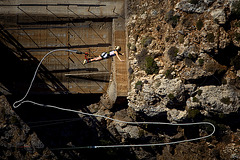bungee flying