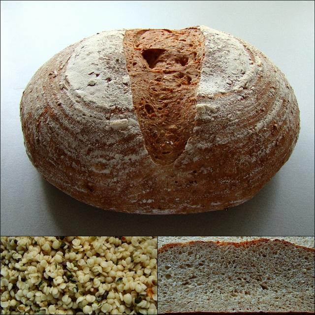 Hanf-Brot / Hennepbrood