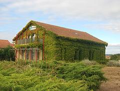 11 octobre les anciennes tuileries à Limoux