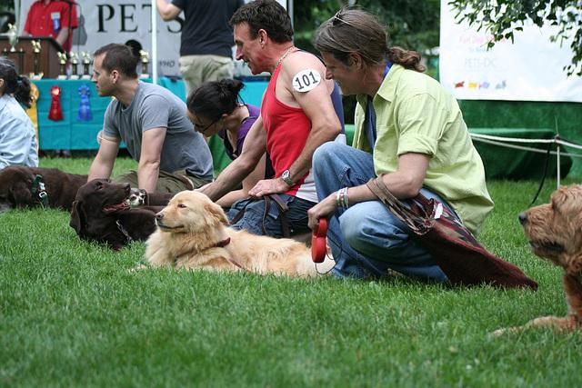 61.PrideOfPetsFunDogShow.Dupont.WDC.21June2009