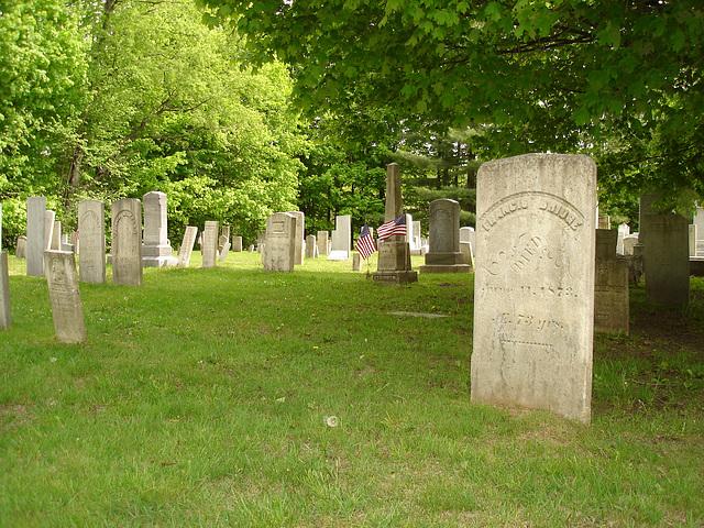 Cimetière de Johnson  /  Johnson's cemetery -   Vermont .  USA /  États-Unis.  23 mai 2009- Francis Gridge. June  11. 1873.