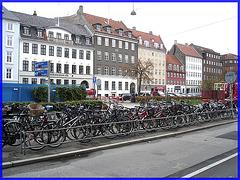 Bikes garden !  Jardin de vélos !  Copenhagen- 20 octobre 2008