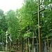 2009-07-29 05 UK Bjalistoko