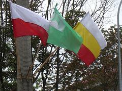 Tra la tuta urbo videblis la esperanta flago