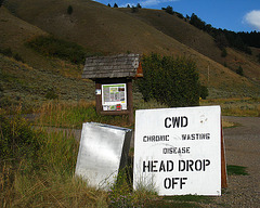 Chronic Wasting Disease Head Drop Off (3771)