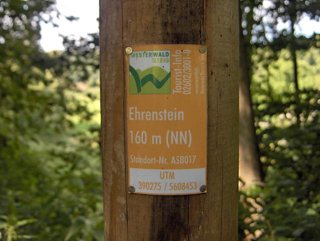 Disbranĉejo al Ehrenstein – detalaj informoj pri la loko
