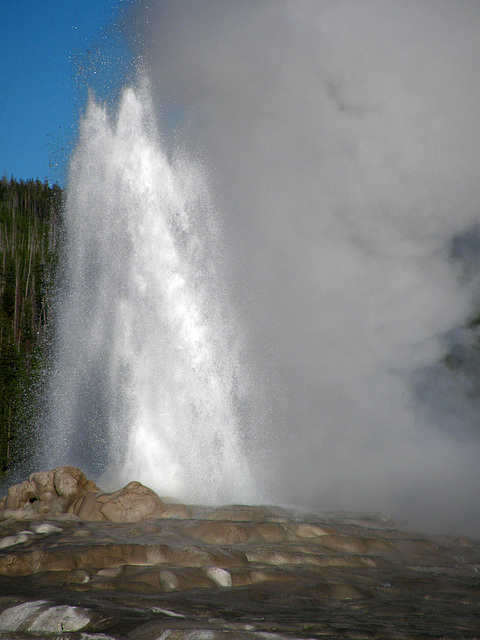 Old Faithful Geyser (1623)