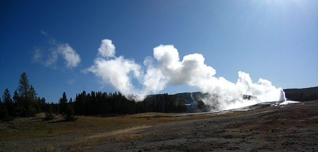 Old Faithful Geyser (3901)