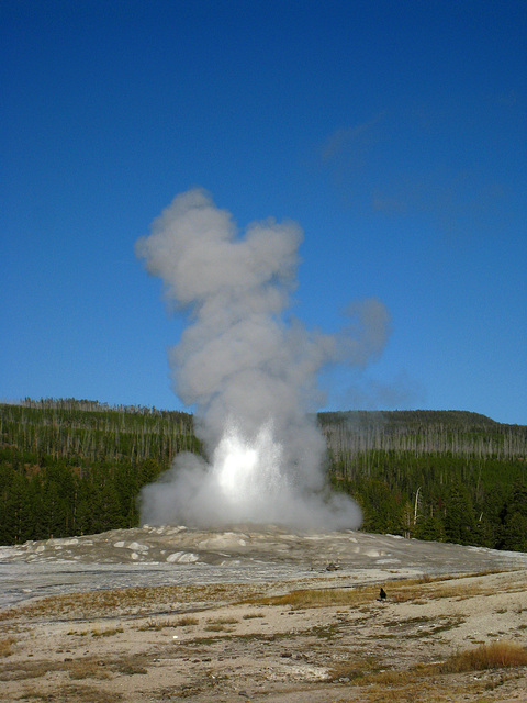 Old Faithful Geyser (4001)