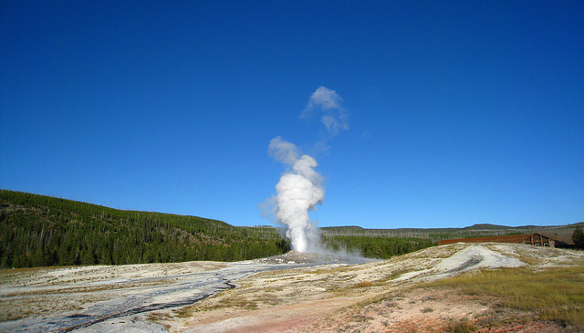 Old Faithful Geyser (4012)