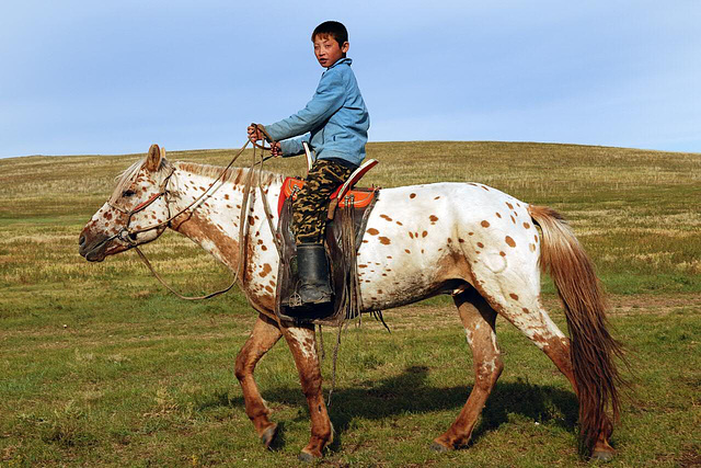 The young boy on his horse