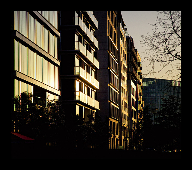 warm evening light