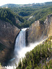 Lower Falls On The Yellowstone River (1653)