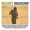 CDFrontInsert.SecretShadows.Trance.Autumnal.September2009