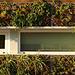 377.SolarDecathlon.NationalMall.WDC.13oct07