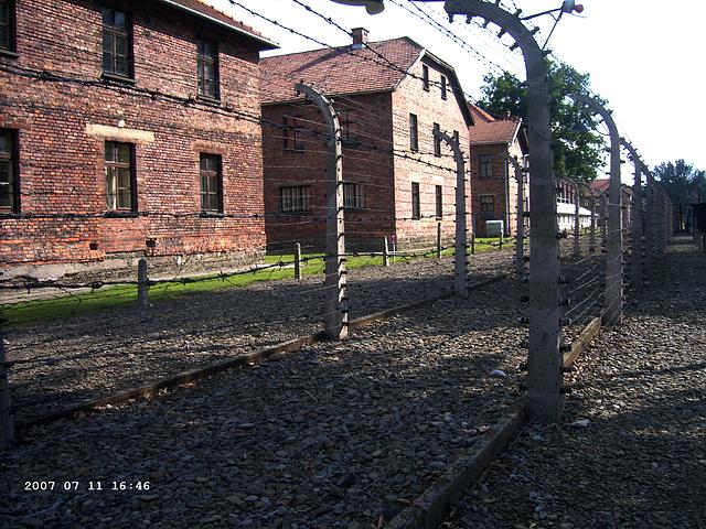 Auschwitz I - Oświęcim (5)