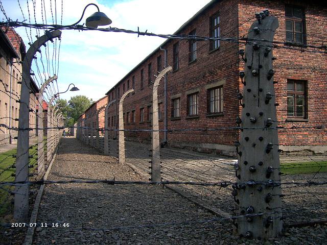 Auschwitz I - Oświęcim (6)