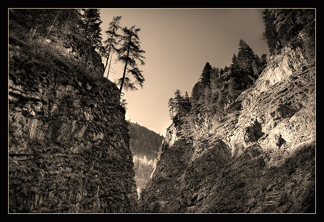 late canyon light - 2