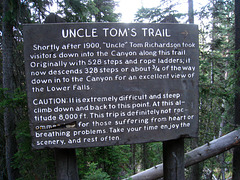 Uncle Tom's Trail (4230)