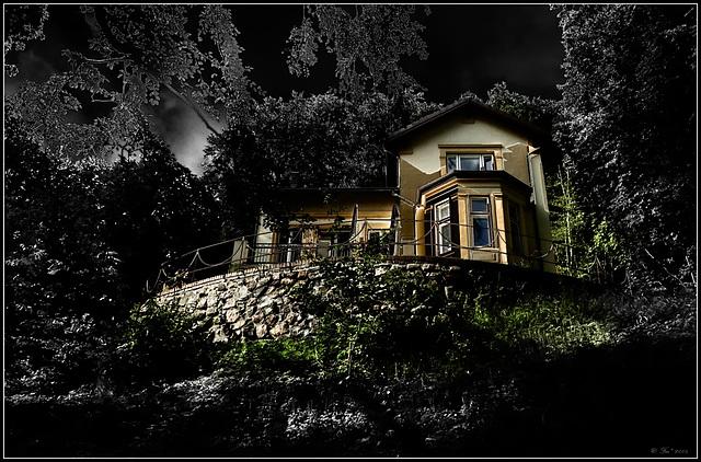 the hidden villa