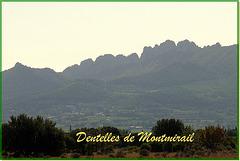 Dentelles de Montmirail