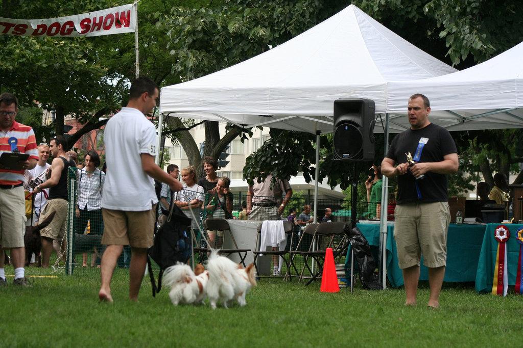 82.PrideOfPetsFunDogShow.Dupont.WDC.21June2009