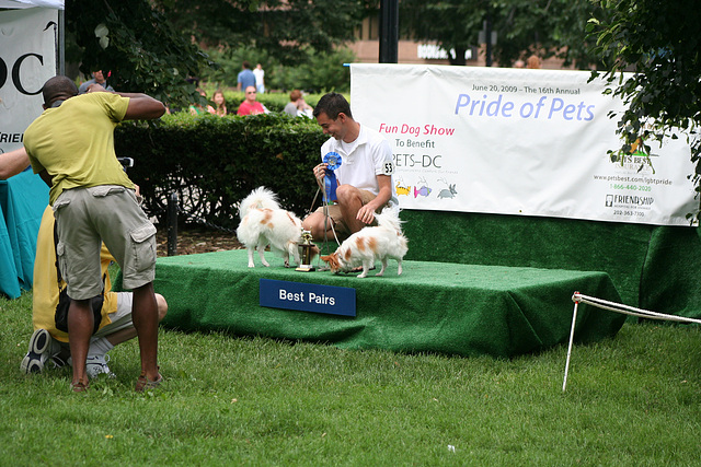 85.PrideOfPetsFunDogShow.Dupont.WDC.21June2009