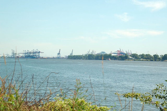 entlang der Elbe017
