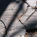 Devil's Postpile Scraped (0533)