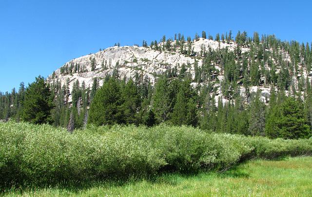 Devils's Postpile National Monument (0498)