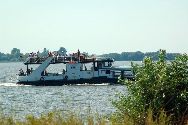 entlang der Elbe051