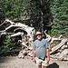 Devils's Postpile National Monument (0517)
